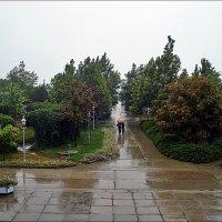 Летний дождик :: Нина Корешкова