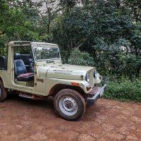 Транспорт в джунглях...Индия,север Гоа... :: Александр Вивчарик