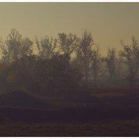 туман :: Viktoriya Bilan