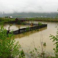 Весна, наводнение. :: Николай Елисеев