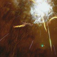 Цветы фейерверка.... :: Валерия  Полещикова