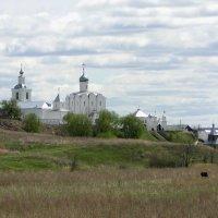 Храмовый комплекс в Арском :: Елена Шемякина
