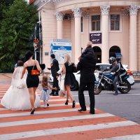 Молодым везде у нас дорога! Даже на красный! :: Ирина Данилова