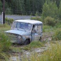 Танки грязи не боятся :: Дмитрий Н
