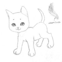 Котёнок :: НяФФнАя БеЛоЧкА