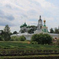 Толгский монастырь :: Марина Туманова