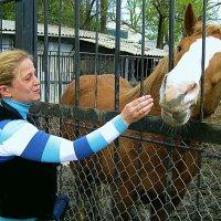 я люблю свою лошадку... :: Александр Корчемный