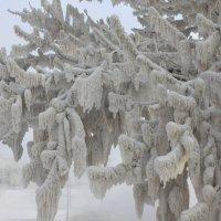 Зима в моём городе :: Savayr