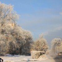 Морозно :: Savayr