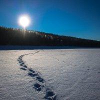 Путь к солнцу :: Роман Кондрашин