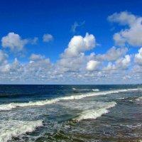 Барашки небесные и морские :: Сергей Карачин