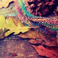 лесные шишки от сынишки... :: Оксана Закусилова