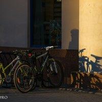Тень и не тень :: PRoBoF- Feofannen