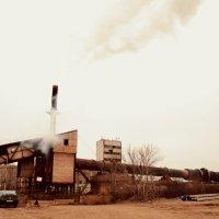 Умирающий завод :: Ирина Бакутина
