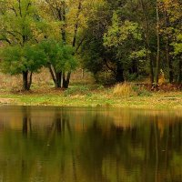 Октябрь на Долгом пруду :: анна нестерова
