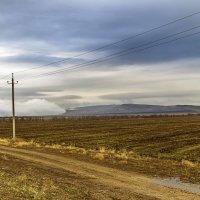 Облако легло на землю :: Дмитрий Потапкин