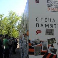 9 мая 2014 на Тверском бульваре. :: Елена