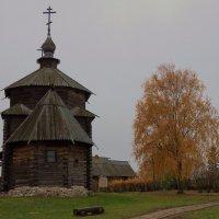 Осень,ты на грусть мою похожа... :: Татьяна Алферова