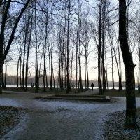 Парк замер в ожидании зимы.... :: Алёна Савина