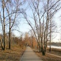 Осенние прогулки :: Алёна Савина