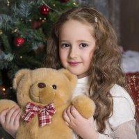 В предвкушении Нового года) :: Ольга Литвинова