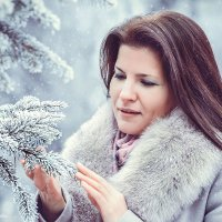 зимняя сказка :: Alena