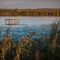 """на озере """"Бездонном""""... :: Сергей Величко"""