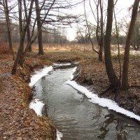 Вдоль да по речке, речке Серебрянке - IMG_5906 :: Андрей Лукьянов
