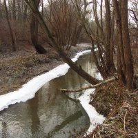 Вдоль да по речке, речке Серебрянке - IMG_5942 :: Андрей Лукьянов