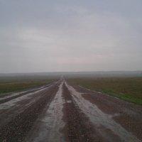 Летний дождь :: Александр Робинович