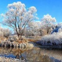 Хрусталиками льда звенела тишина... :: Лесо-Вед (Баранов)