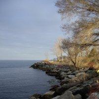 Солнечный остров близ Торонто...(апрель, 2011) :: Юрий Поляков