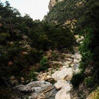 Горная река :: Oksanka Kraft