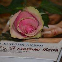 «Я люблю тебя». :: Таня Фиалка
