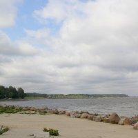 Финский залив. :: Сергей Крюков