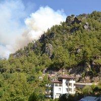 Лесной пожар в горах Алании :: Ольга Толмачева