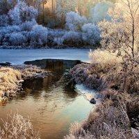 Замёрзшее солнце пылающим инеем... :: Лесо-Вед (Баранов)