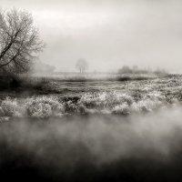 Затерянные в тумане... :: Андрей Войцехов