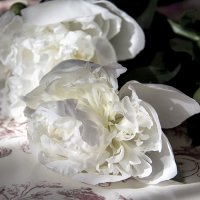 Июньской метели аромат... :: Bosanat