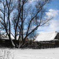 Снежные красоты)) :: Александра Гоголева