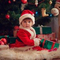 Маленький Санта :: Дарья Домникова