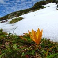 Доверившись осеннему теплу... :: Lilija