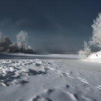 зимний сон :: Дамир Белоколенко