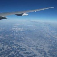с высоты птичьего полёта :: doberman