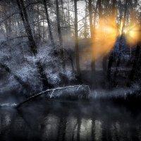 Рассветный мотылёк.. :: Андрей Войцехов