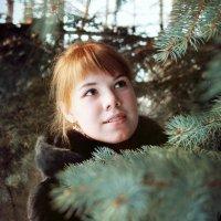 Зимняя сказка :: Anastasia Ionova