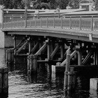 Иоанновский мост :: Владимир Лисаев