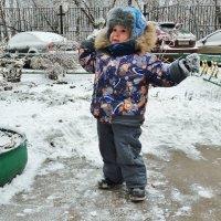 Ура, снег! :: Светлана Лысенко