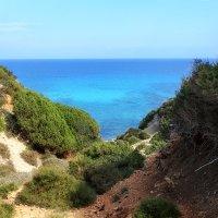 Национальный заповедник Северного Кипра на полуострове Карпасия :: Anna Lipatova