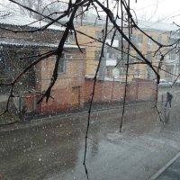 Дождь со снегом. :: Анфиса